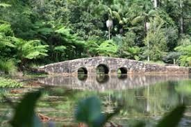 Tamborine Mountain Botanical Gardens